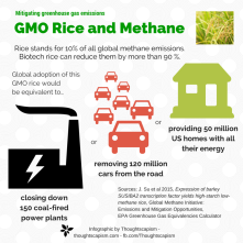 GMOs and CO2 (1)