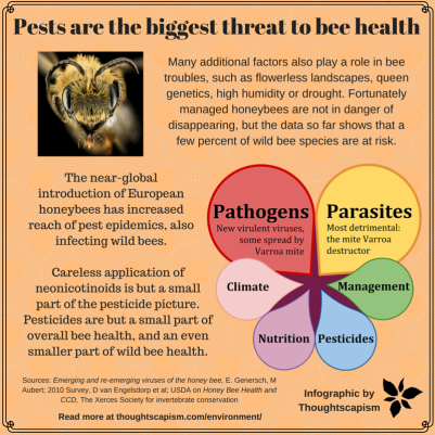 Bee health simple