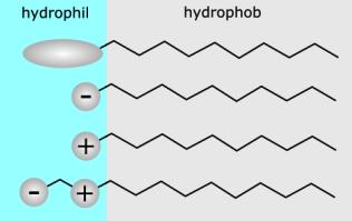 tensidehyrophilhydrophob