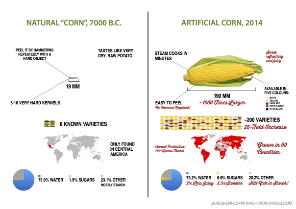 artificial-natural-corn3
