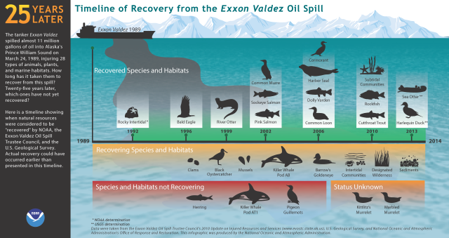 exxon-valdez-timeline-of-recovery-5jun14_noaa