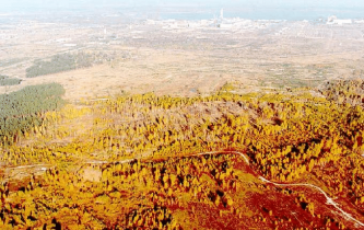 The-Red-Forest-with-the-Chernobyl-nuclear-power-plant-in-the-background-A-outline-of